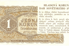 Hladova-korunaa-binfo.cz_